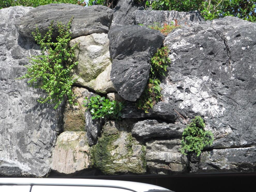 Volcanic rock Wall Garden