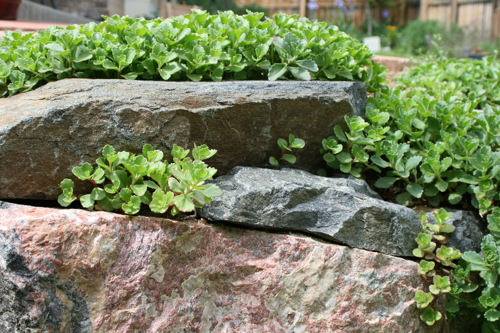 Retaining Rock Wall Garden