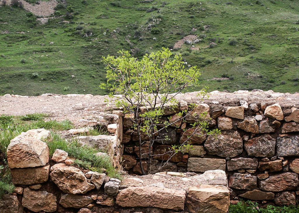 Flawless Rock Wall Garden