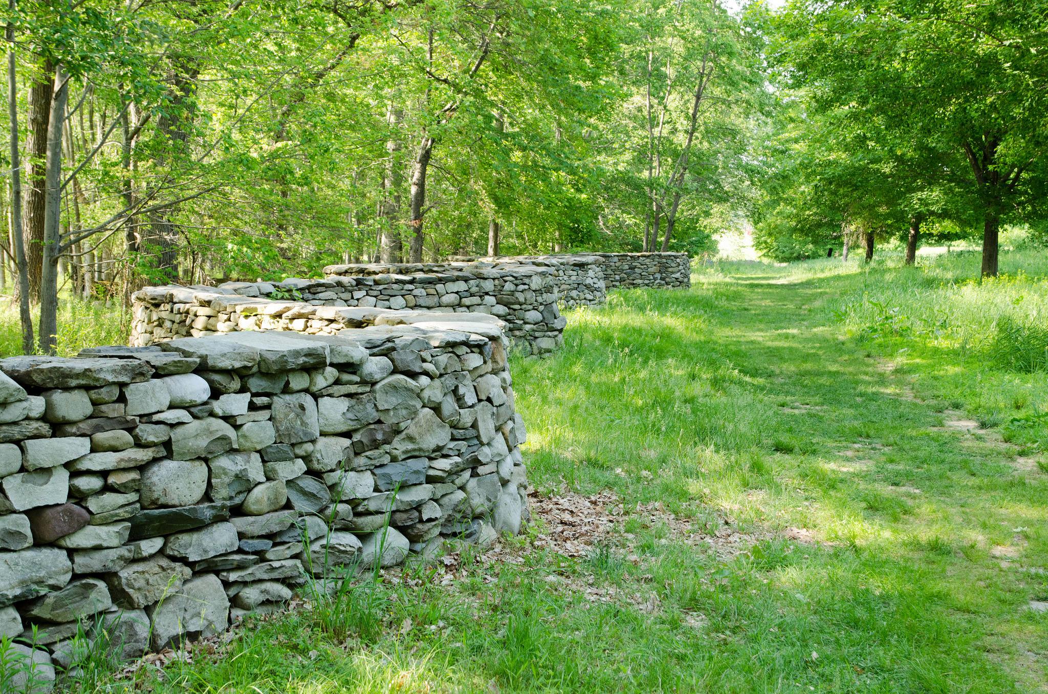 Huge Rock Wall Garden
