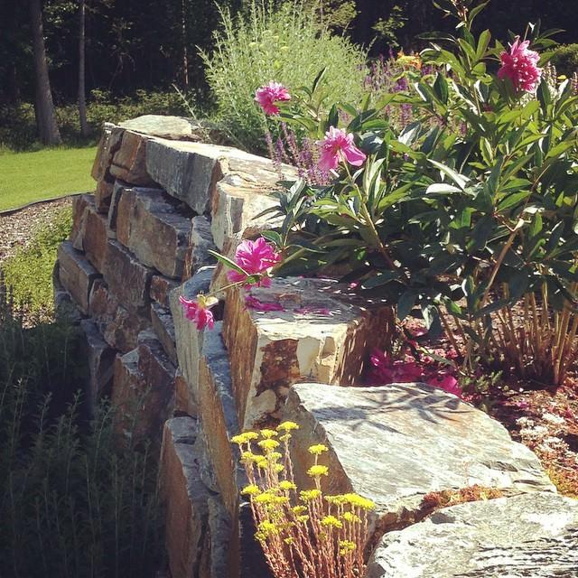 Spectacular Rock Wall garden