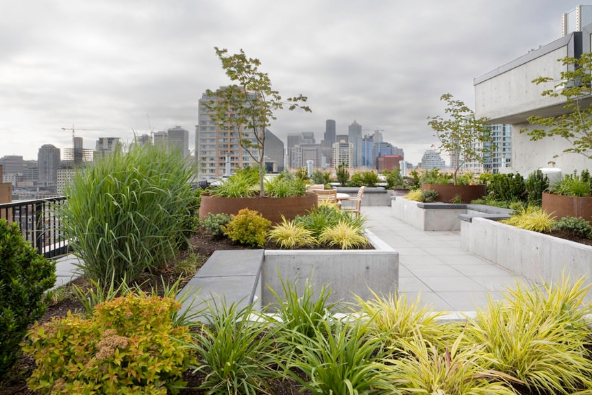 Amazing Roof Top Garden