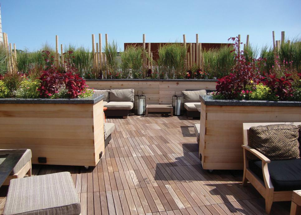 comfy roof top garden