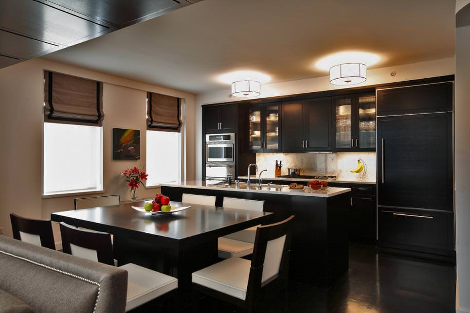 Dark Contemporary Kitchen Black Cabinets
