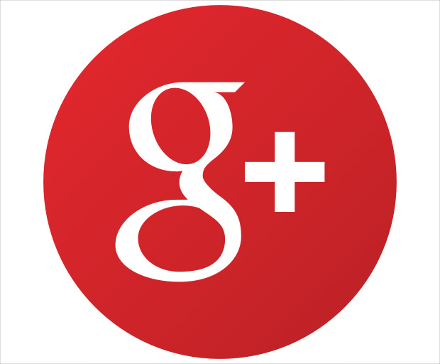 Google+ Share Icon