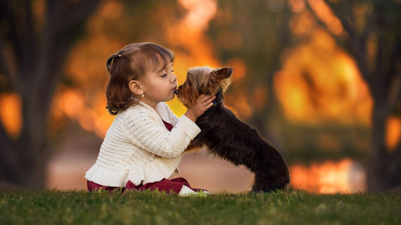 little girl kissing dog