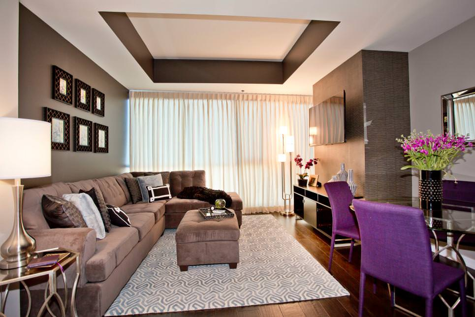 brown contemporary living room with tray ceiling