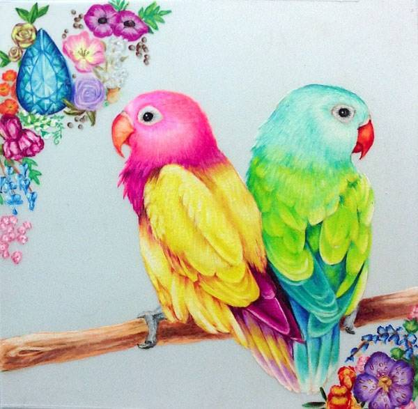 birds drawing with colours