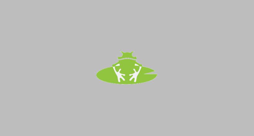 Stunning Frog Logo