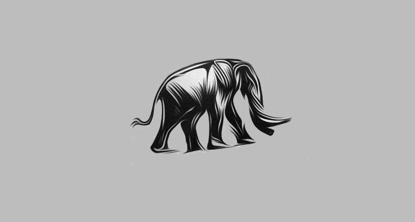 Shuttermuse Logo