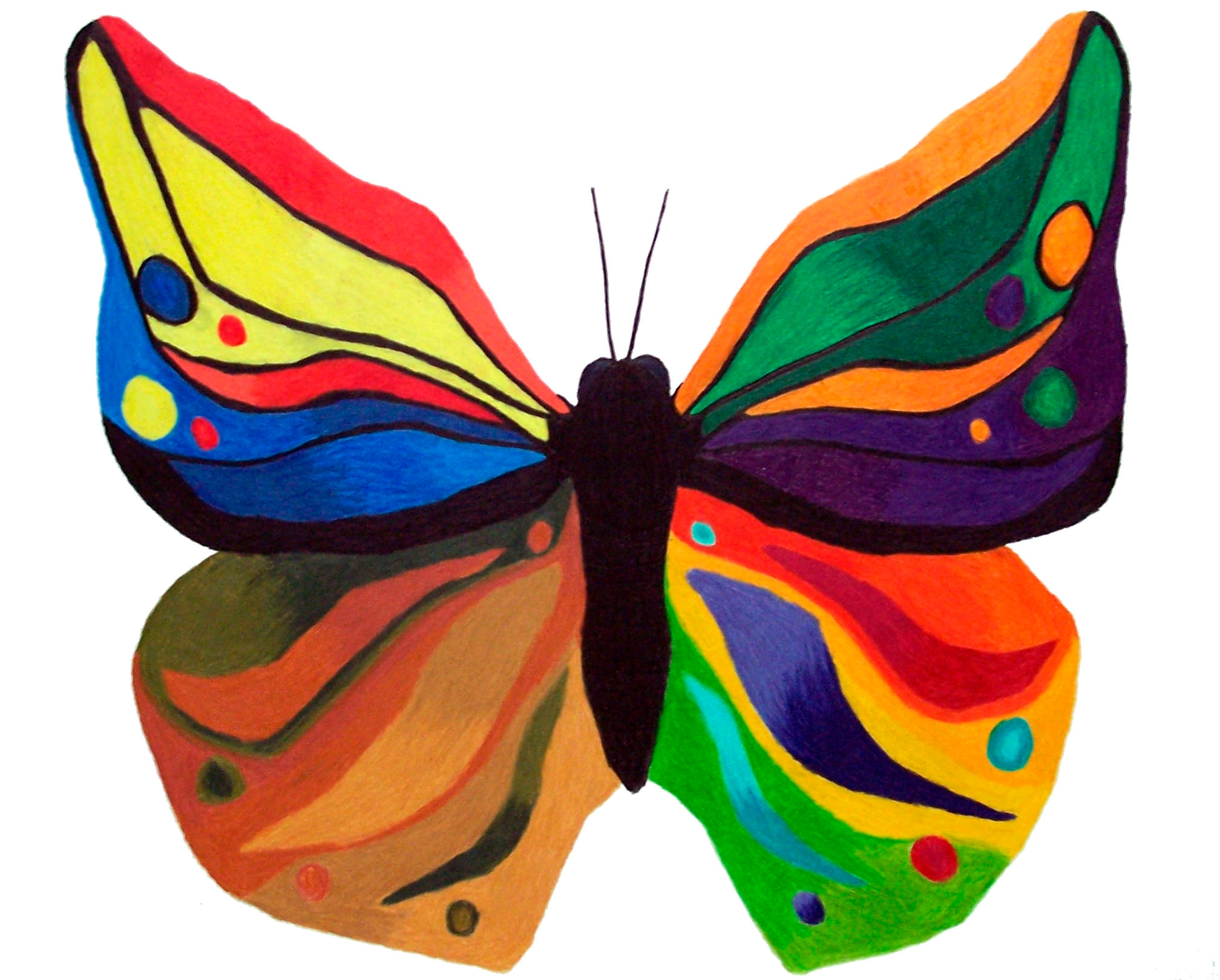 Colour Wheel Butterfly