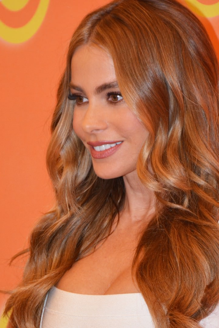 Sofia Vergara Stright Hair Look