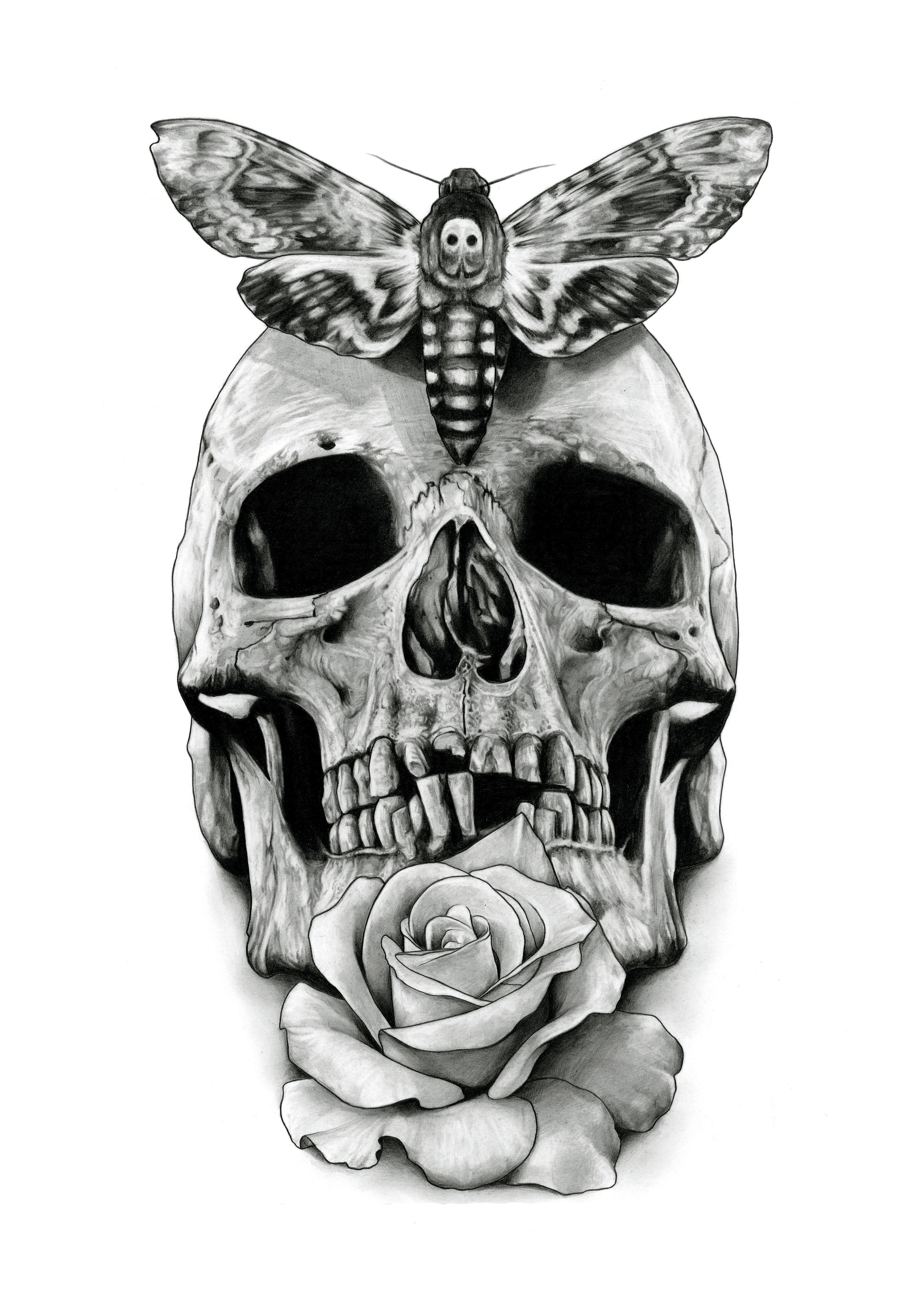 Skull Tattoo Design Drawing