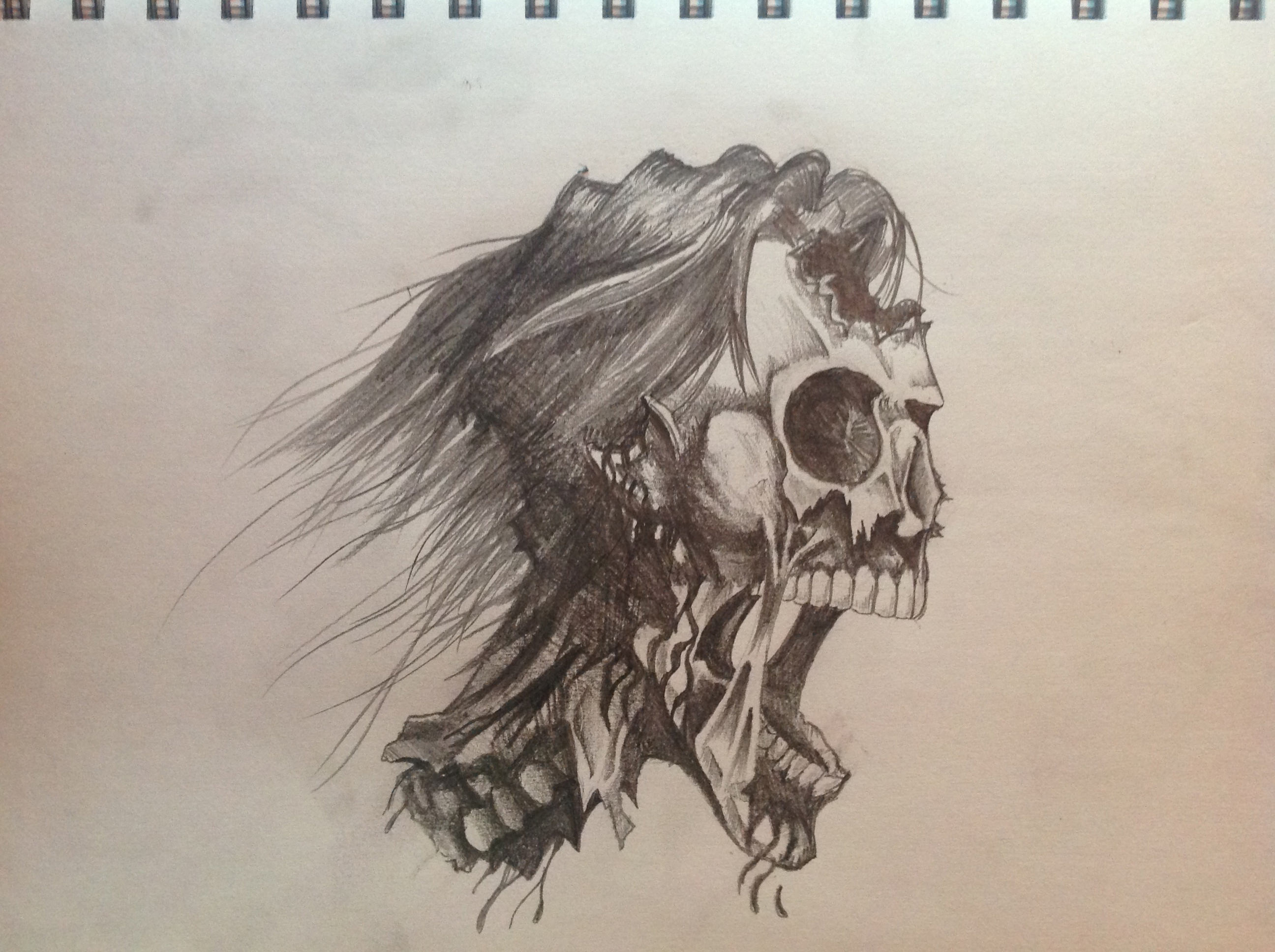 Zombie Skull Drawing