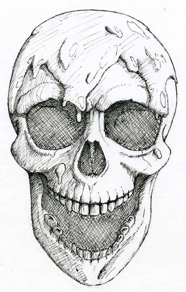 Pencil Drawing of Skull