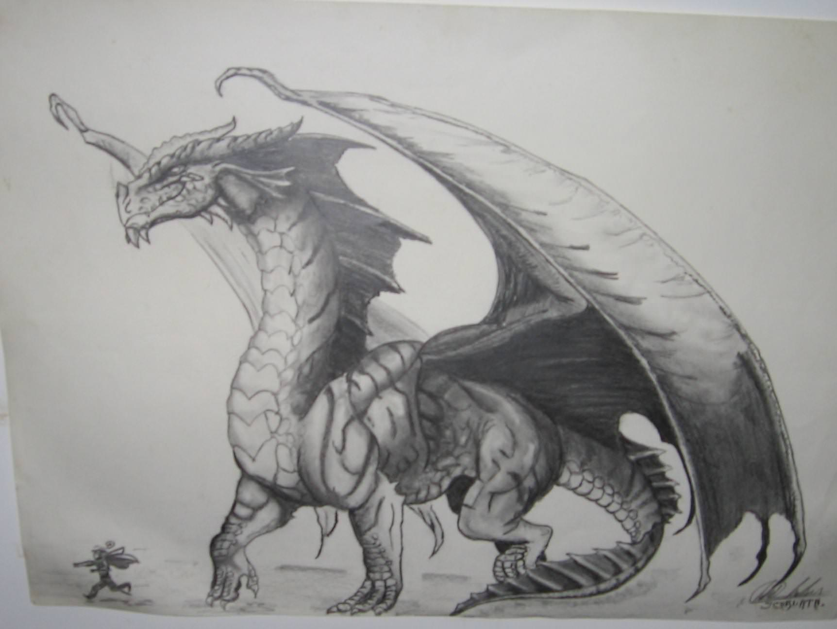 Realistic Dragon Drawings Design Trends Premium Psd