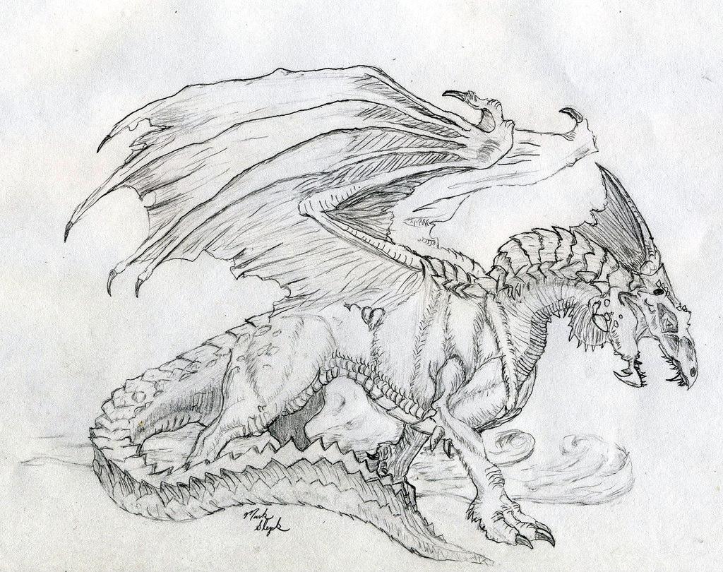Beautiful Dragon Drawing