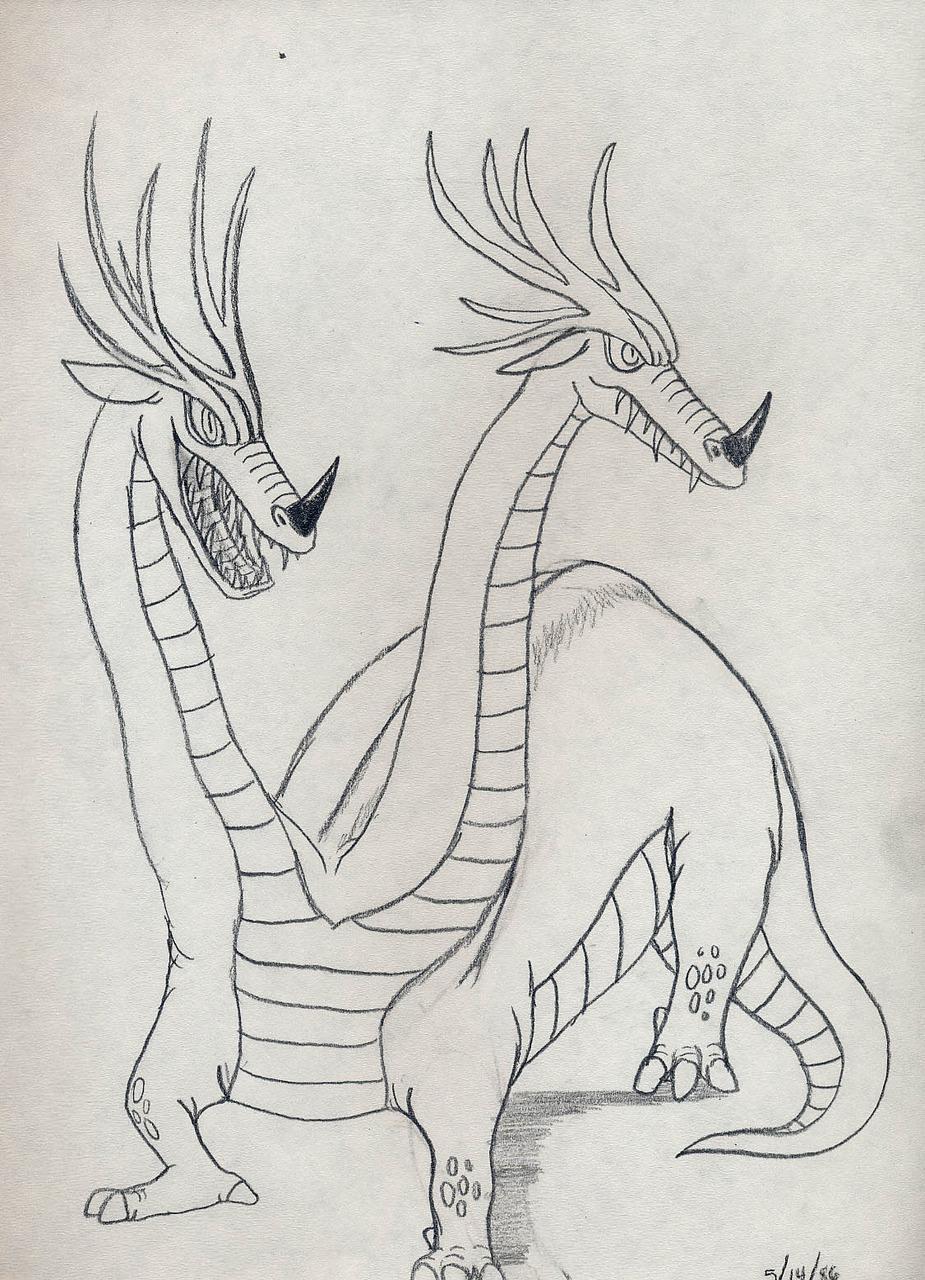 Two Head Dragon Drawing