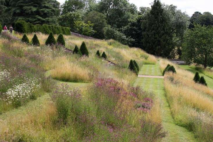 grass-garden-easton-wild-garden
