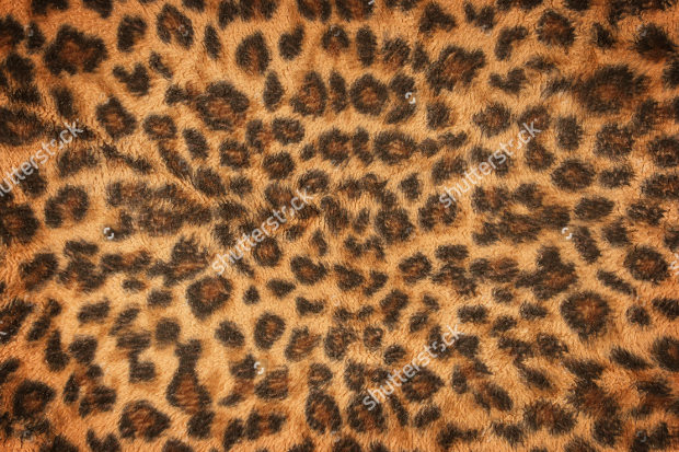 Fabric Leopard Pattern