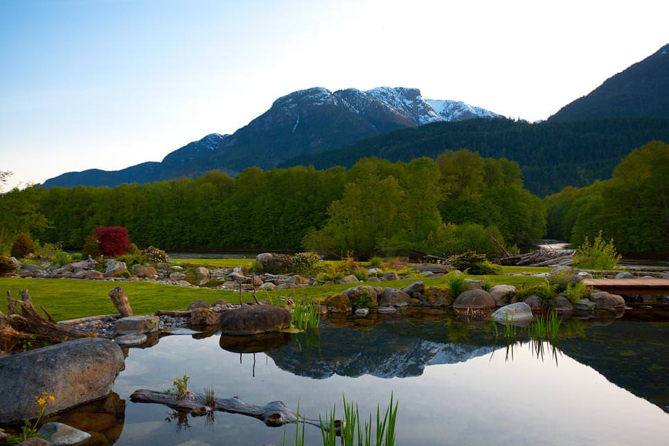 stunning backyard pond designs