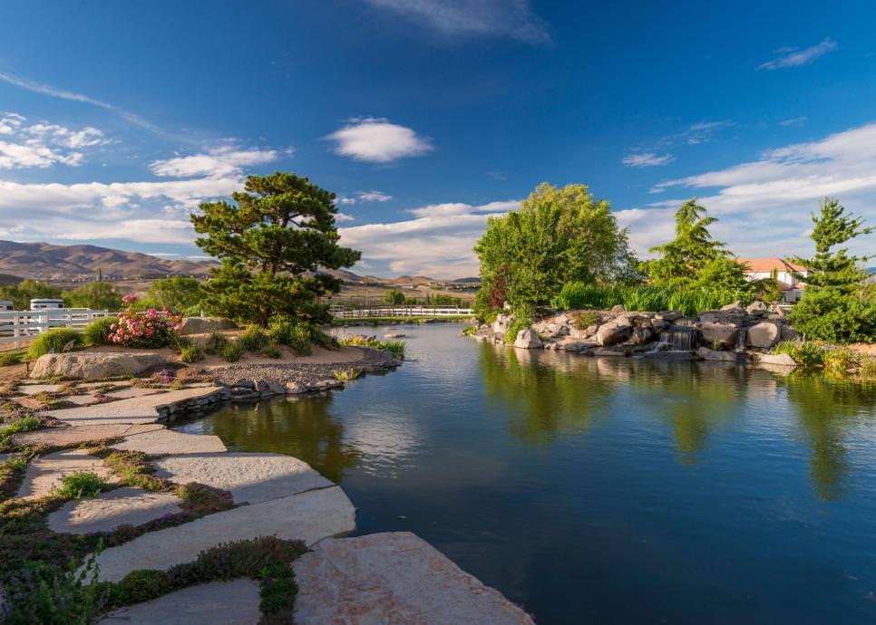 peaceful backyard pond designs
