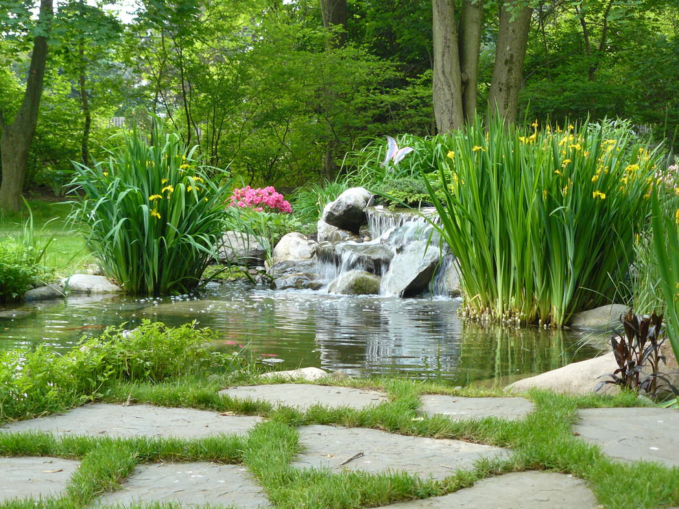 elegant backyard pond design