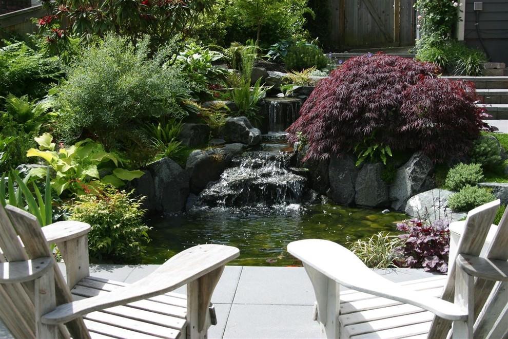 serene backyard pond design