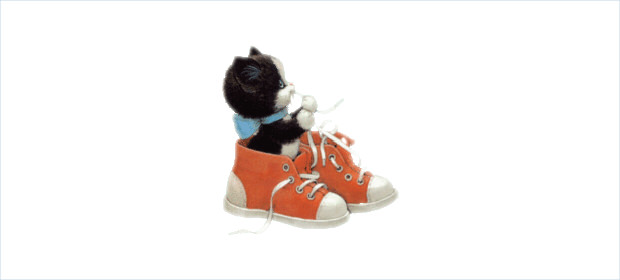 Shoes and Cat Clipart
