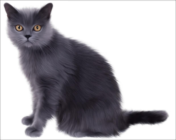 20 cool collection of cat cliparts images pictures