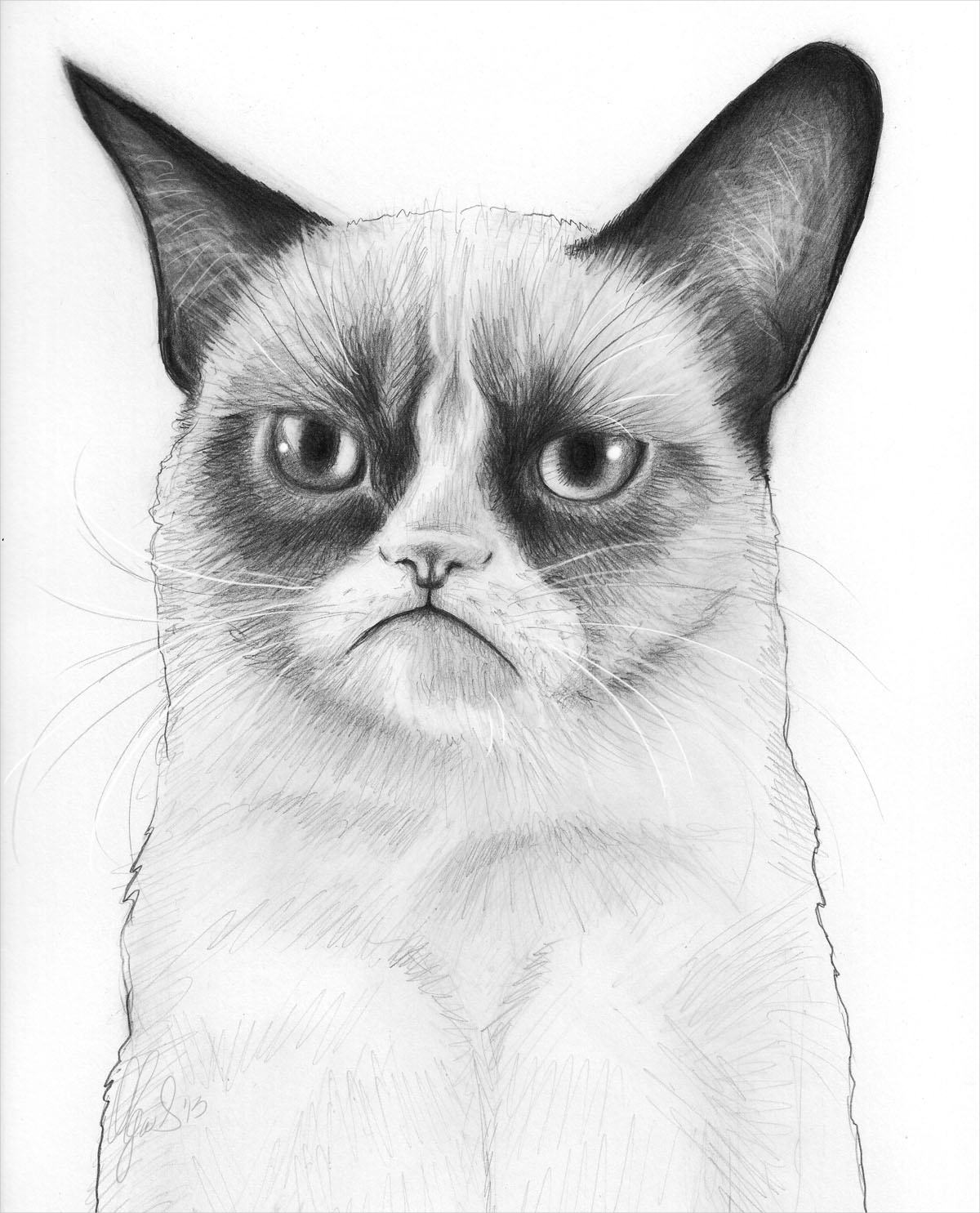 Grumpy Cat Black And White Drawing
