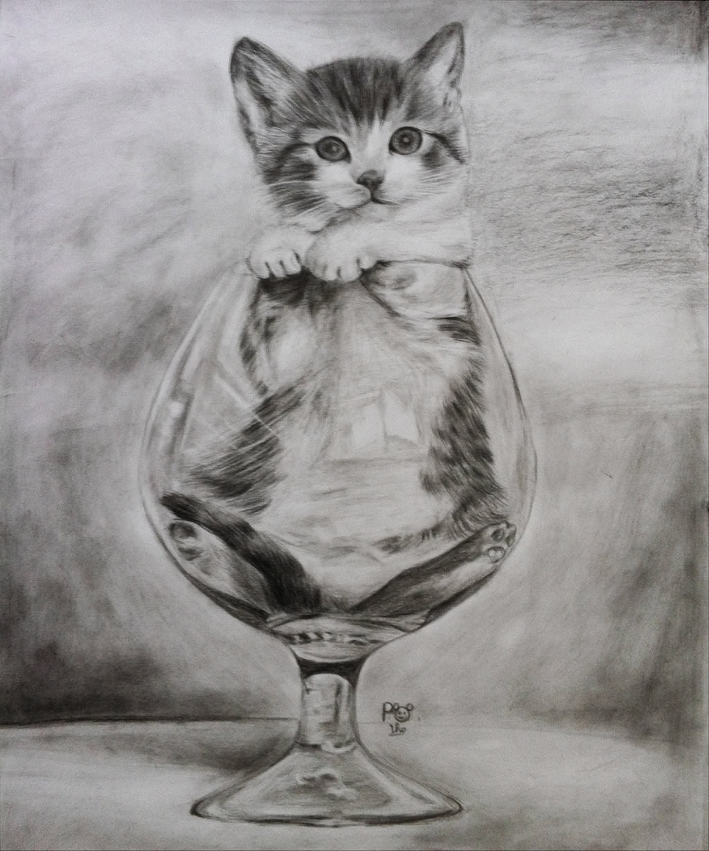 Cat in glass pencil drawing