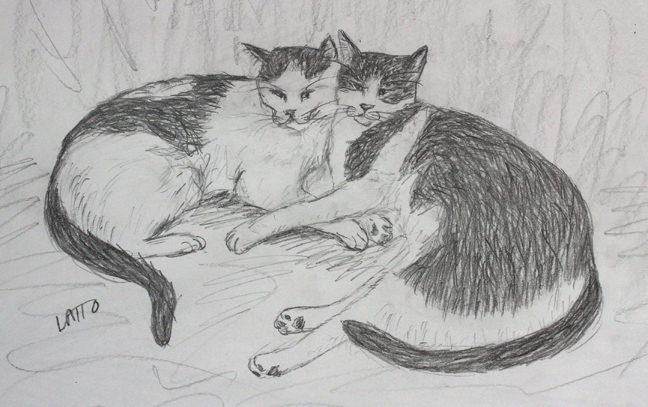 two loving cats drawing
