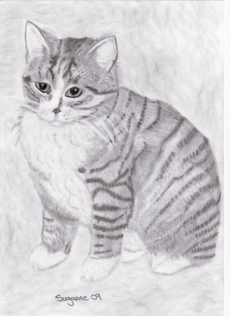 Mums Cat Drawing