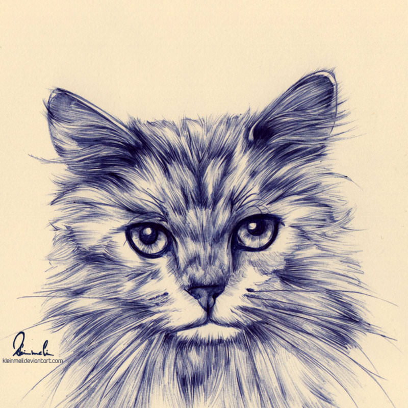 cat drawing with ballpoint pen