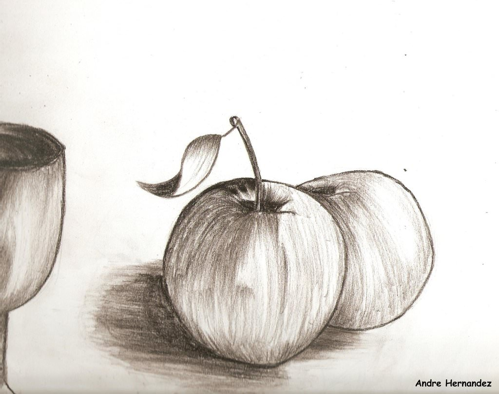 apple charcoal sketch drawing