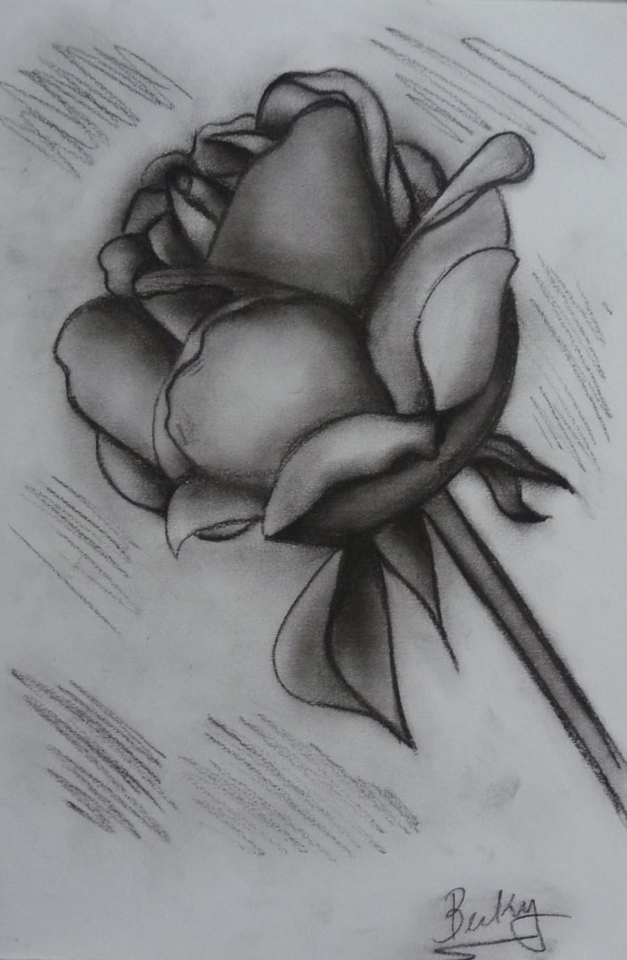 charcoal rose drawing1