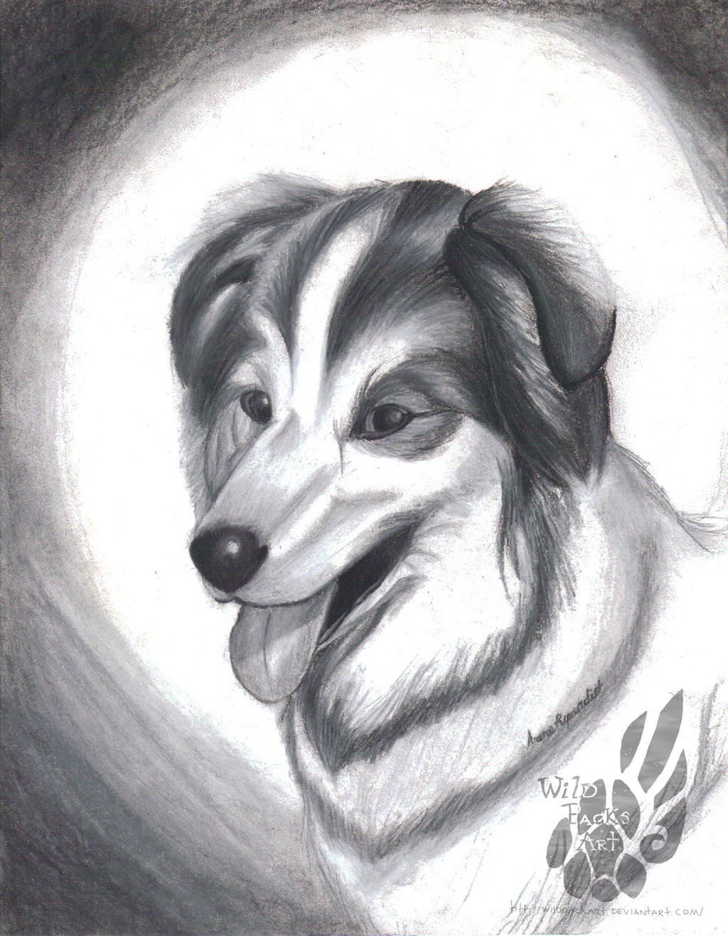 realistic dog drawing
