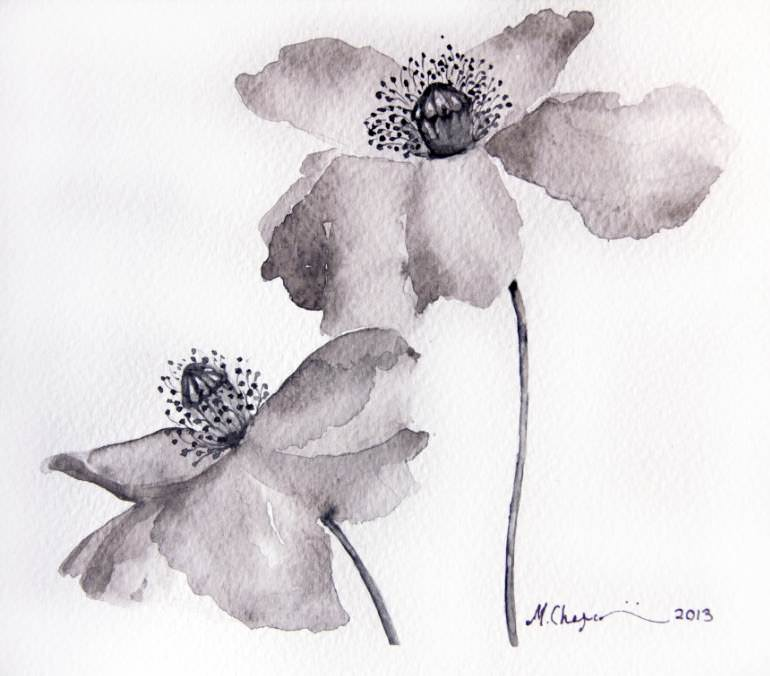 poppy flower beautiful painting