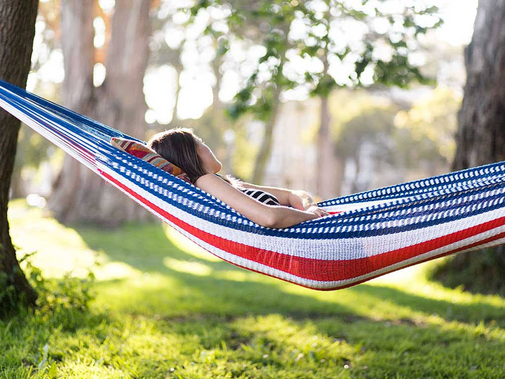 American Hammock In Backyard Trees