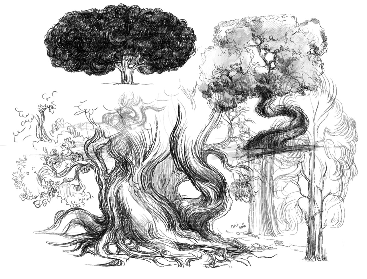 17+ Beautiful Collection Of Tree Drawings, Art Ideas ...