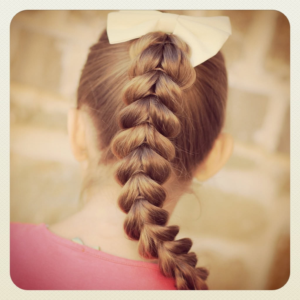 Variety Braided Hairstyle