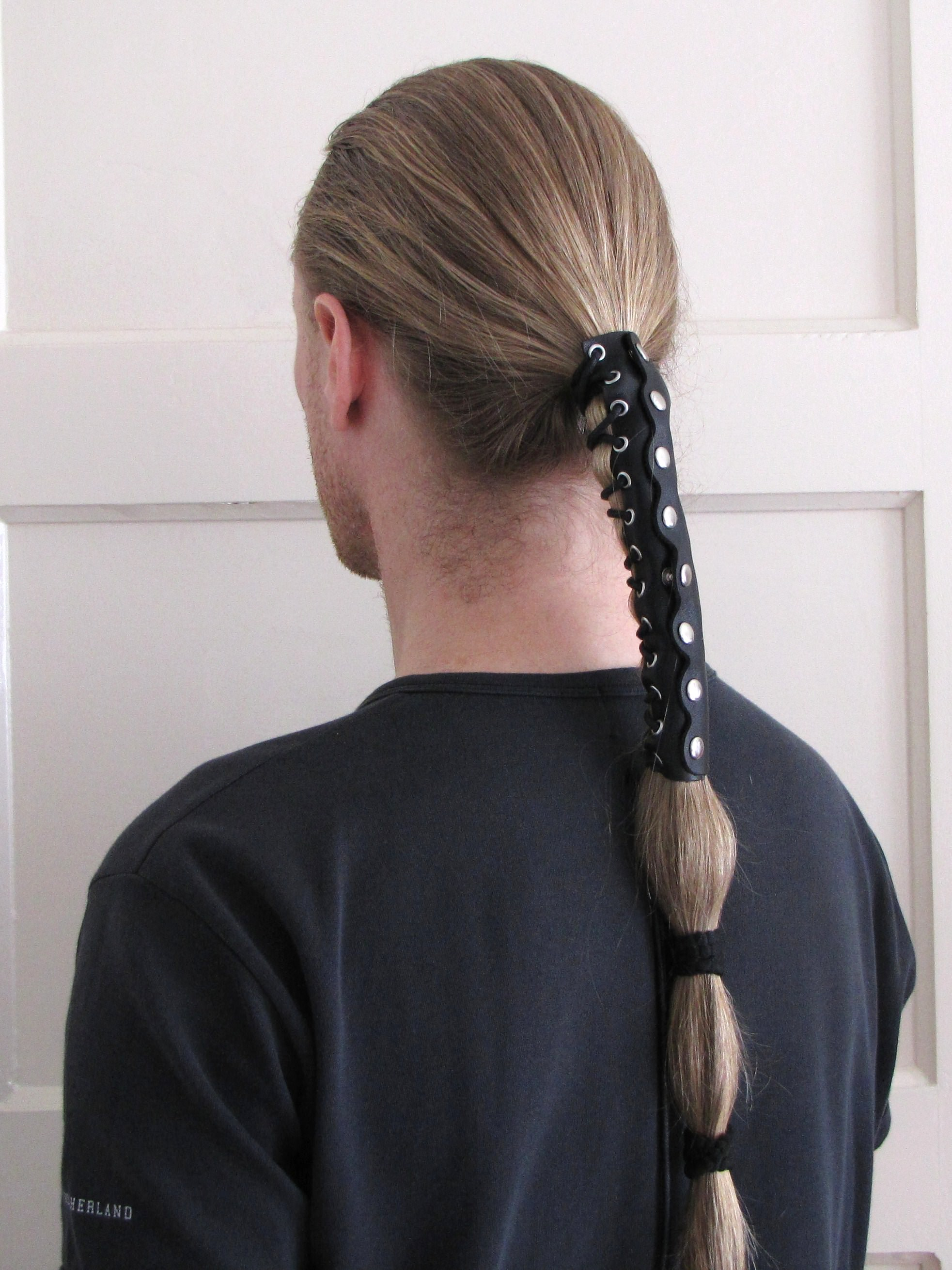 Long Pony Tail Hairstyle for Men