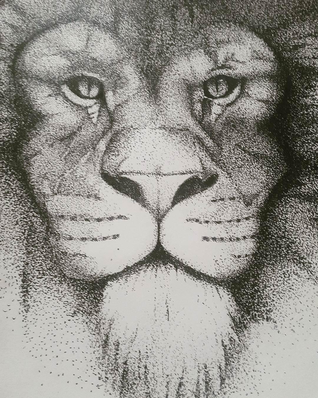 Nice Lion Face