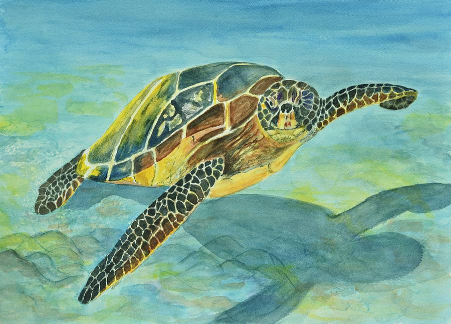 Sea Turtle Linda Brody