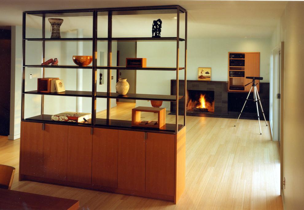 Elegant Modern Shelves Designs