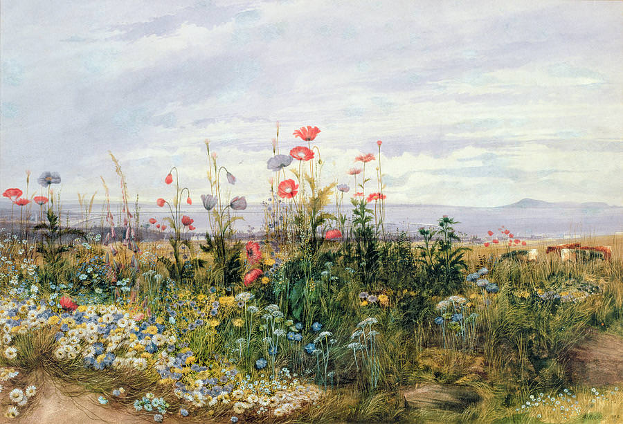 amazing wild flower painting1