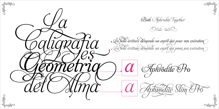 aphrodite slim pro font with flourishes and curves
