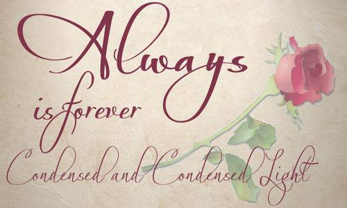 ld wedding font specialy for wedding