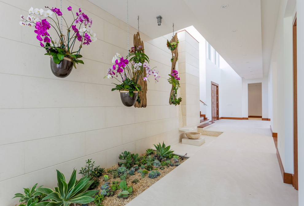 Mediterranean Indoor Garden Design